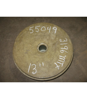 """BACK PLATE - GOULDS NM 3196 MT - 13"""""""