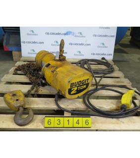 d. ELECTRIC HOIST - 2 TONS - BUDGET 115847-18