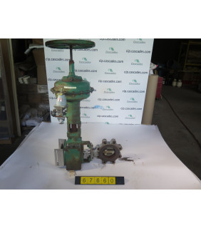 """BUTTERFLY VALVE - FISHER A31A - 4"""" - USED"""