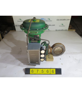 """BUTTERFLY VALVE - FISHER 8560 - 4"""" - USED"""
