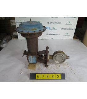 """BUTTERFLY VALVE - JAMESBURY 815W - 4"""" - USED"""