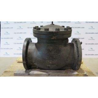 "CHECK VALVE - 10"" - SURE FLOW"
